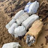 Autoridades ocupan cargamento millonario de cocaína en Arecibo