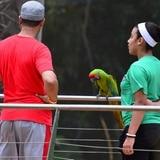 Parque La Marquesa, una alernativa para este verano