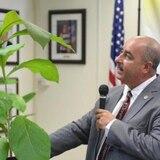 Agricultura repartirá 50,000 árboles de Teca