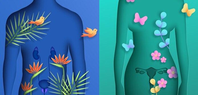 El cáncer de próstata es, aparte del cáncer en la piel, la primera causa de muerte en los residentes de Estados Unidos, mientras que el cáncer ovárico es el séptimo de mayor prevalencia en esa nación.