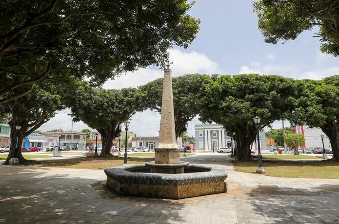 La plaza posee 16 jardines adornados con árboles de ficus que dan sombra a quienes pasean por ella.