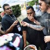 Laboratorios clandestinos de cannabis