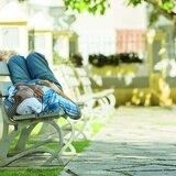 Gobierno establecerá centros de asistencia para personas sin hogar
