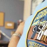 Cierran División de Arrestos Especiales y Extradiciones por caso positivo