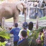 Endosan Alianza Publico-Privada para el Zoológico de Mayagüez