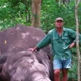 Dramática muerte de cazador aplastado por un elefante
