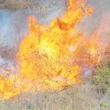 La hora del tiempo: riesgo de fuegos en el sur