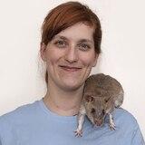 Bióloga argentina salva vidas entrenando ratas