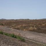 Regresa la sequía moderada a la Isla