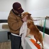 Familia recupera a su perra casi dos meses después de un tornado