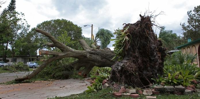 Un total de 307 millones sirvieron para lo que FEMA definió como otras necesidades. (Archivo)