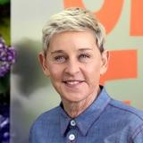 Ellen Degeneres: Resumen de la controversia