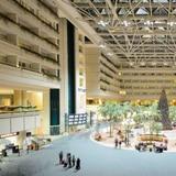 Aeropuerto de Orlando establece récord de pasajeros