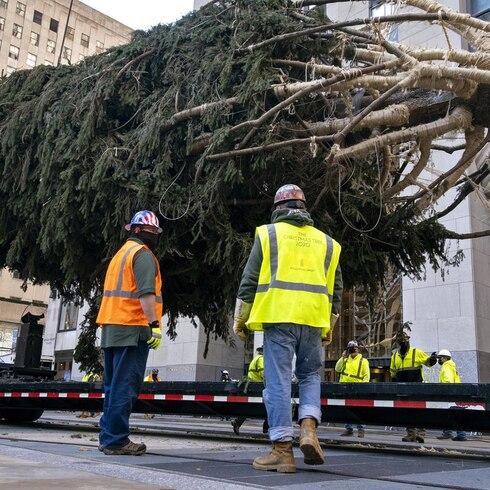 El árbol de Navidad de Nueva York llega al Rockefeller Center