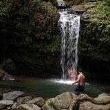 Lo que tienes que saber si deseas ir a El Yunque