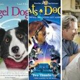 Filmes sobre mascotas