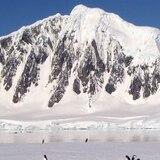 La temperatura del Ártico subirá entre 3 y 5 grados hasta 2050