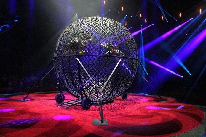 Además de los actos en motoras, habrá otros del circo tradicional.