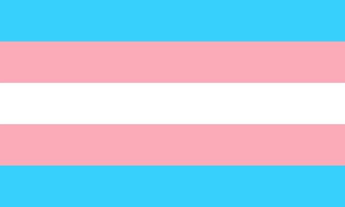 Banderas del orgullo trans.