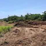 Destruyen área costera en Isabela