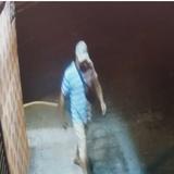 Buscan hombre por hurto de vehículos en Arecibo