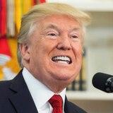 Ligan a donante de Donald Trump con Whitefish