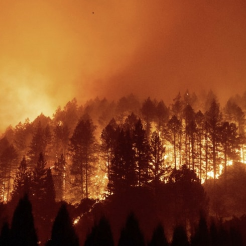 Bajo fuego el Valle de Napa