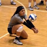 Dalianliz Rosado se unirá a Athletes Unlimited