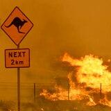 Usarán satélite para predecir incendios forestales en Australia